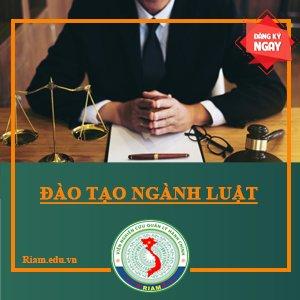 học liên thông ngành luật tại tphcm